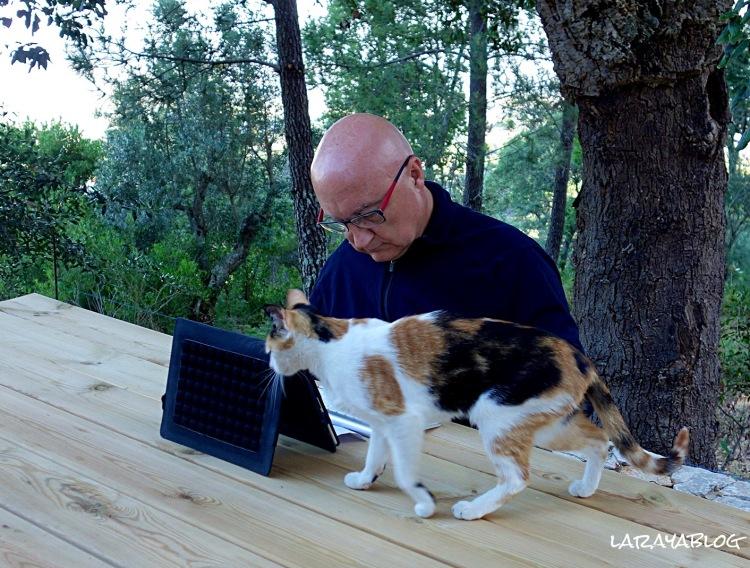 El autor del blog escribiendo esta entrada junto al gato alentejano de Carla
